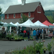 Mt.Si Coffee Roasters Returns Issaquah Farmers Market!